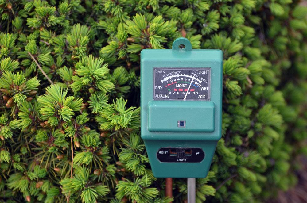 Best pH Meter