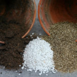 Vermiculite vs Perlite: What Are The Differences Between Them