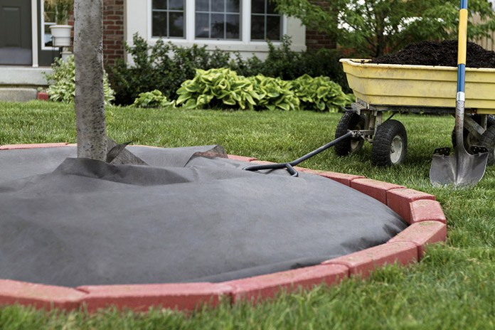 how to install a weed barrier - Weed Barrier