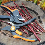 The Best Hand Pruners Currently On The Market – Our Reviews & Recommendations
