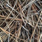 6 Fantastic Reasons to Switch to Pine Straw Mulch